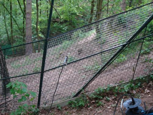drateny-plot-na-zahradu